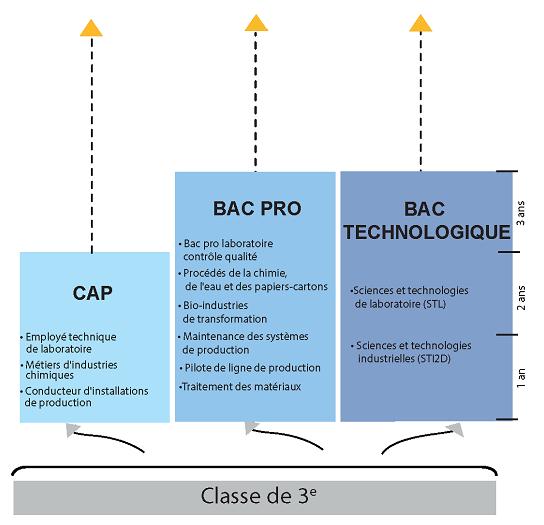 Parcours de formation : BAC Pro / BAC général ou technologique