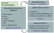 Méthodes utilisées pour la caractérisation des types de rosacée et l'identification de cibles thérapeutiques.