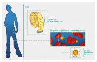 Le nanomètre : le domaine de l'infiniment petit