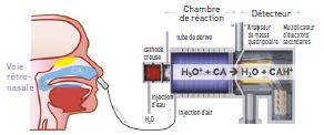 La spectrométrie de masse est une méthode de mesure in vivo des composés d'arôme libérés dans la cavité nasale lors de la consommation.