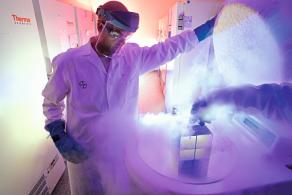 Tumor samples in liquid nitrogen