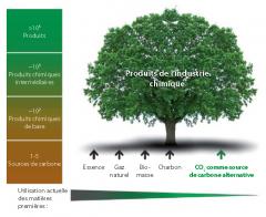 Les sources de carbone utilisées comme matière première pour la production de l'industrie chimique